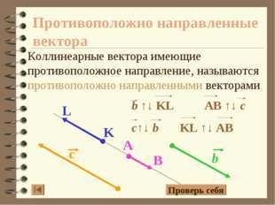 Противоположно направленные вектора Коллинеарные вектора имеющие противополож
