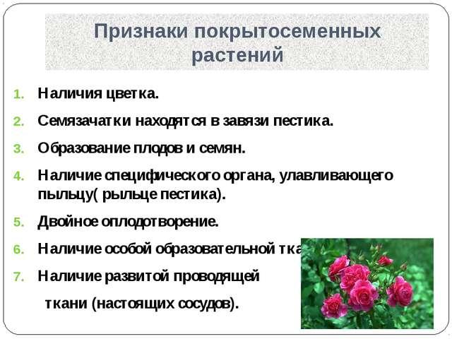 Признаки покрытосеменных растений Наличия цветка. Семязачатки находятся в зав...