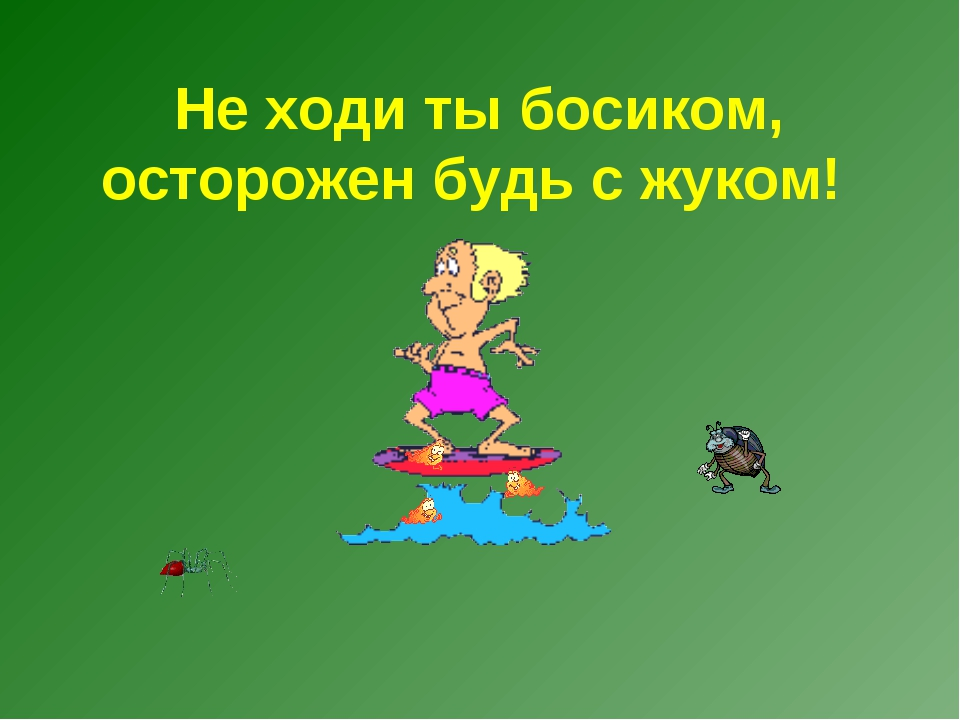 Не ходи ты босиком, осторожен будь с жуком!