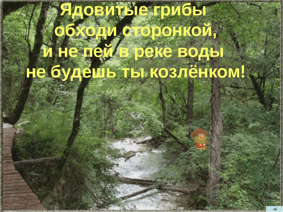 Ядовитые грибы обходи сторонкой, и не пей в реке воды не будешь ты козлёнком!