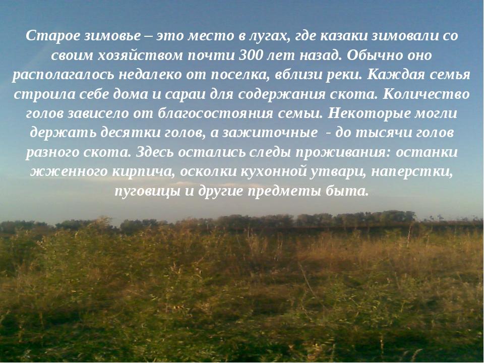 Старое зимовье – это место в лугах, где казаки зимовали со своим хозяйством п...