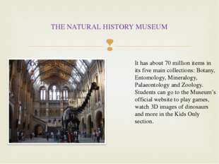 THE NATURAL HISTORY MUSEUM It has about 70 million items in its five main col