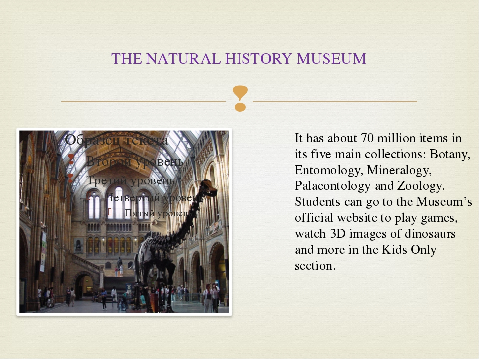 THE NATURAL HISTORY MUSEUM It has about 70 million items in its five main col...