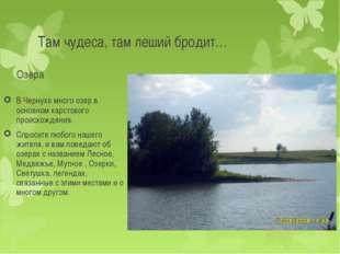 Там чудеса, там леший бродит… Озера В Чернухе много озер в основном карстовог
