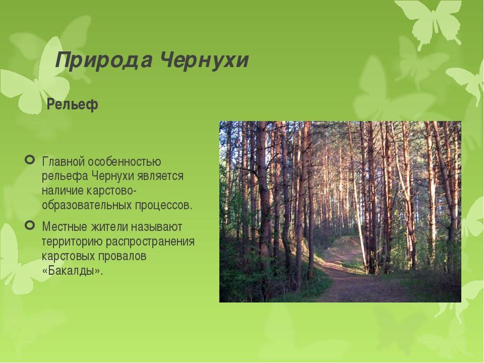 Природа Чернухи Рельеф Главной особенностью рельефа Чернухи является наличие...