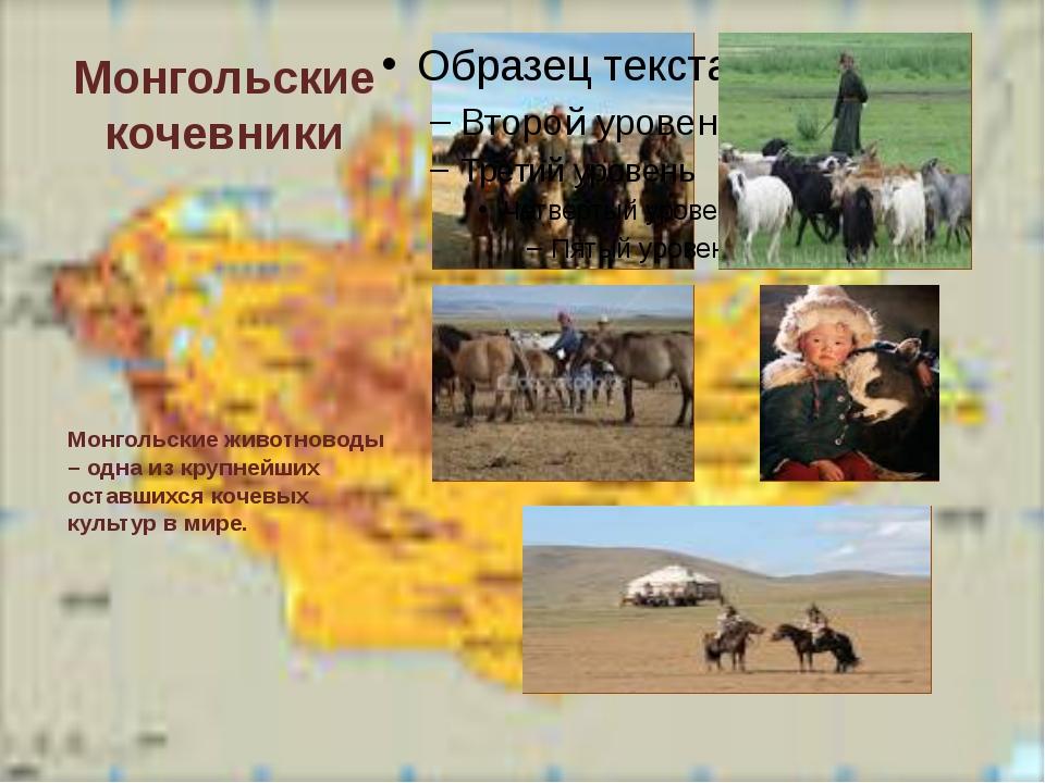 Монгольские кочевники Монгольские животноводы – одна из крупнейших оставшихся...