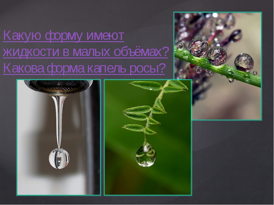 Какую форму имеют жидкости в малых объёмах? Какова форма капель росы?