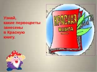 Узнай, какие первоцветы занесены в Красную книгу.