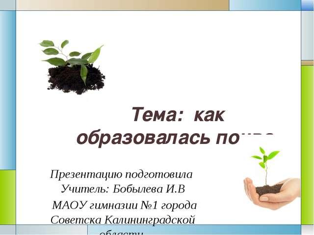 Тема: как образовалась почва. Презентацию подготовила Учитель: Бобылева И.В М...