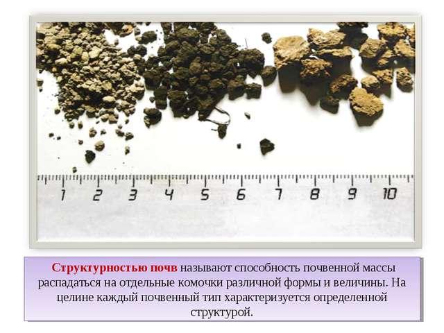 Структурностью почв называют способность почвенной массы распадаться на отде...