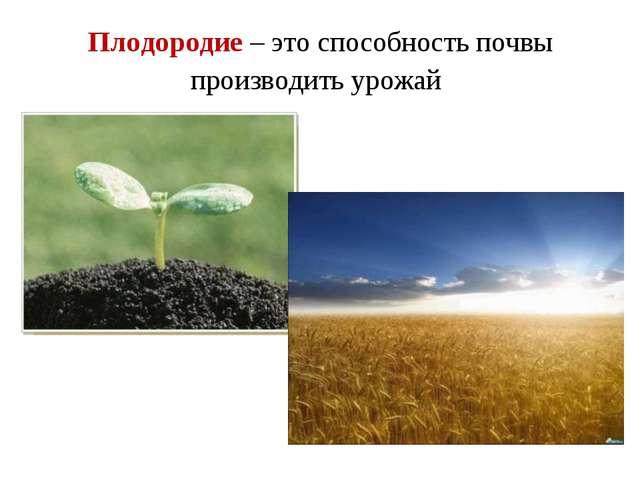 Плодородие – это способность почвы производить урожай