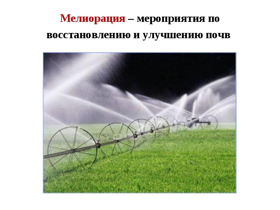 Мелиорация – мероприятия по восстановлению и улучшению почв