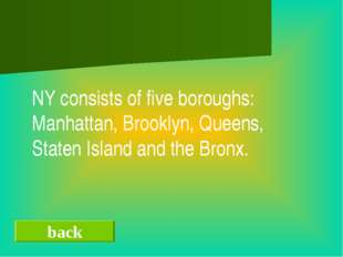 back NY consists of five boroughs: Manhattan, Brooklyn, Queens, Staten Islan