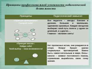 Принципы профессиональной успешности педагогической деятельности Принципы Пед