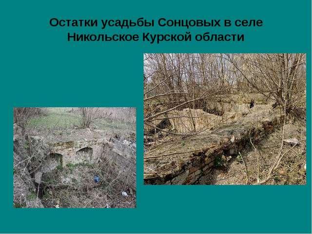 Остатки усадьбы Сонцовых в селе Никольское Курской области