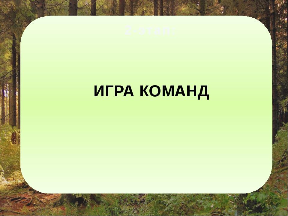 ИГРА КОМАНД 2-этап:
