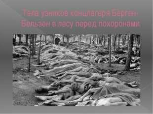 Тела узников концлагеря Берген-Бельзен в лесу перед похоронами