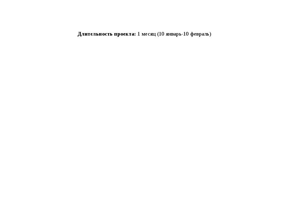 Длительность проекта: 1 месяц (10 январь-10 февраль)