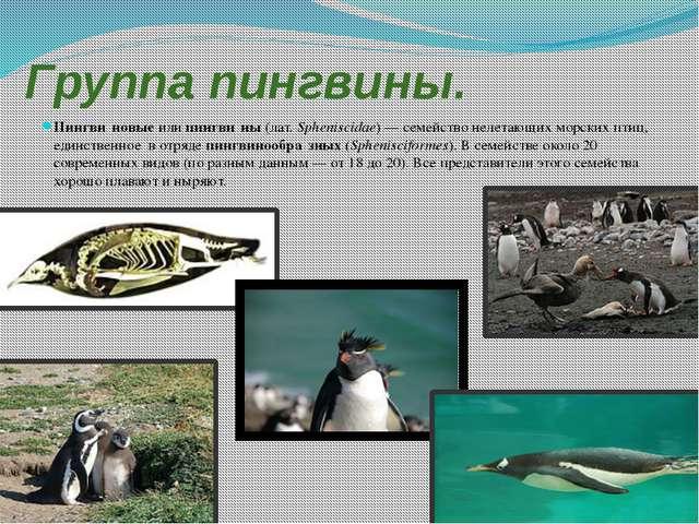 Домашнее задаание по математике 6 класс виленкин списывай.ру