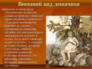 Внешний вид лешачихи Афанасьевв своём труде «Поэтические воззрения славян н