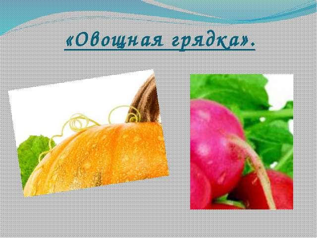 «Овощная грядка».