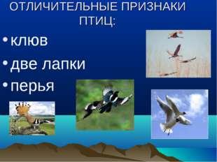 ОТЛИЧИТЕЛЬНЫЕ ПРИЗНАКИ ПТИЦ: клюв две лапки перья