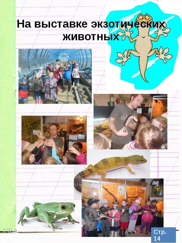 На выставке экзотических животных Стр. 14