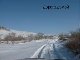 Дорога домой