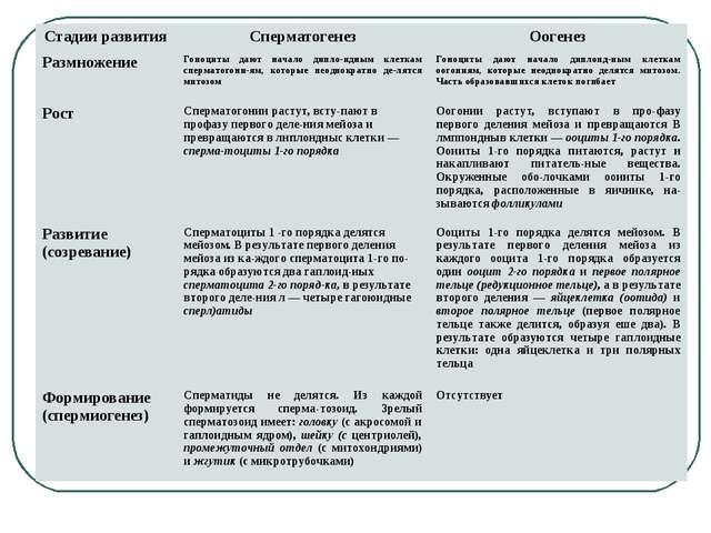 Стадии развитияСперматогенезОогенез РазмножениеГоноциты дают начало дипло-...