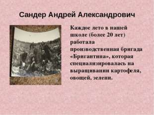 Сандер Андрей Александрович Каждое лето в нашей школе (более 20 лет) работала