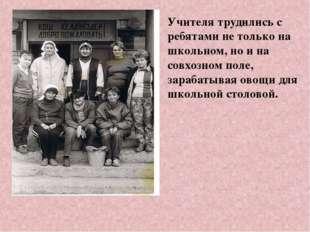 Учителя трудились с ребятами не только на школьном, но и на совхозном поле, з