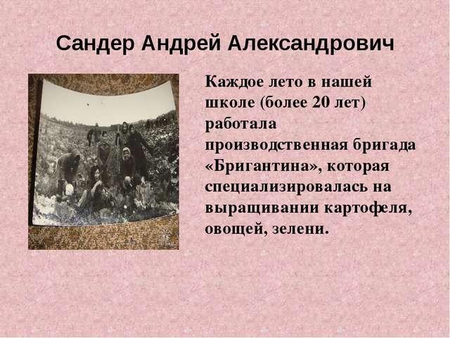 Сандер Андрей Александрович Каждое лето в нашей школе (более 20 лет) работала...