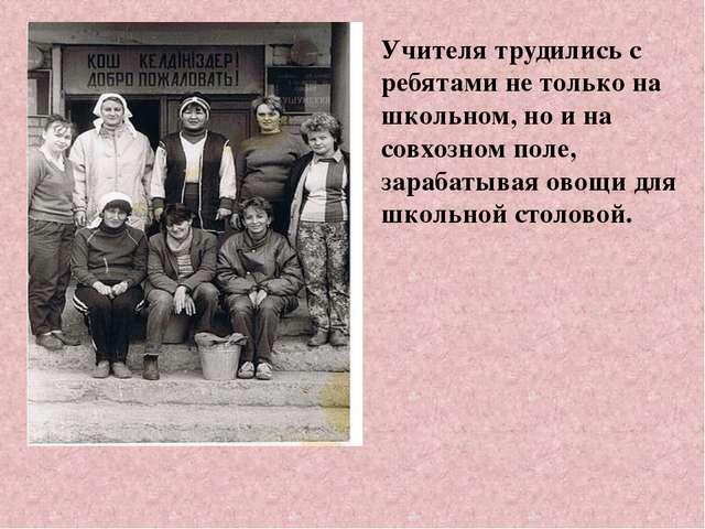 Учителя трудились с ребятами не только на школьном, но и на совхозном поле, з...