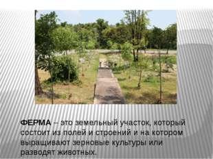 ФЕРМА – это земельный участок, который состоит из полей и строений и на котор