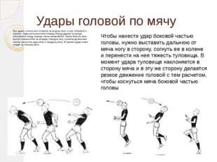 Удары головой по мячу При ударе с места ноги ставятся на ширину плеч и чуть с