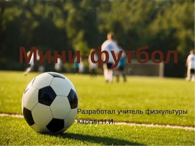 Мини-футбол Разработал учитель физкультуры Каргин Н.И.