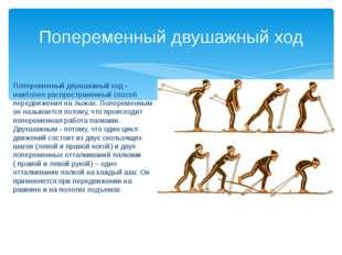 Попеременный двухшажный ход - наиболее распространенный способ передвижения н