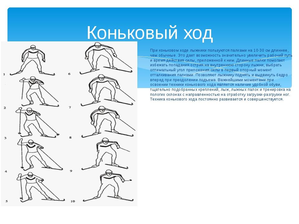 При коньковом ходе лыжники пользуются палками на 10-30 см длиннее, чем обычны...