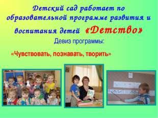 Детский сад работает по образовательной программе развития и воспитания детей