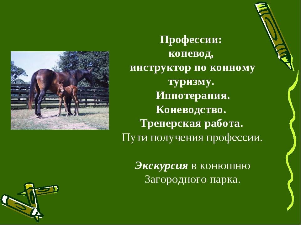 Профессии: коневод, инструктор по конному туризму. Иппотерапия. Коневодство....