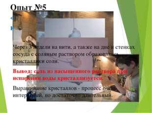 Опыт №5 «Выращивание соляных кристаллов» Через 3 недели на нити, а также на д