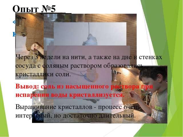 Опыт №5 «Выращивание соляных кристаллов» Через 3 недели на нити, а также на д...
