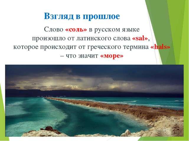 Взгляд в прошлое Слово «соль» в русском языке произошло от латинского слова «...