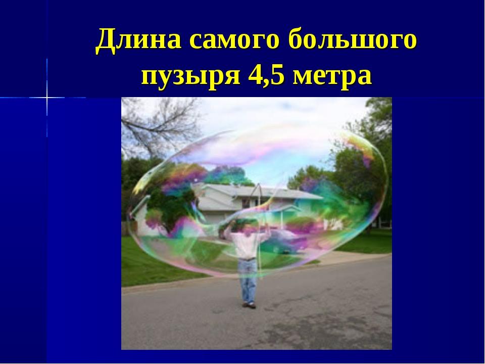 Длина самого большого пузыря 4,5 метра