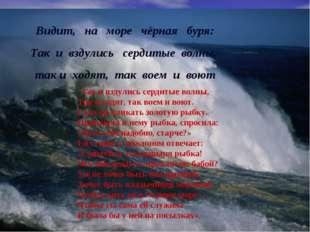 Видит, на море чёрная буря: Так и вздулись сердитые волны, так и ходят, так в