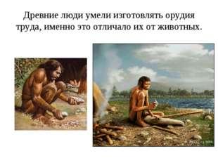 Древние люди умели изготовлять орудия труда, именно это отличало их от животн