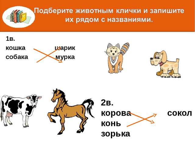 1в. кошка шарик собака мурка 2в. корова сокол конь зорька