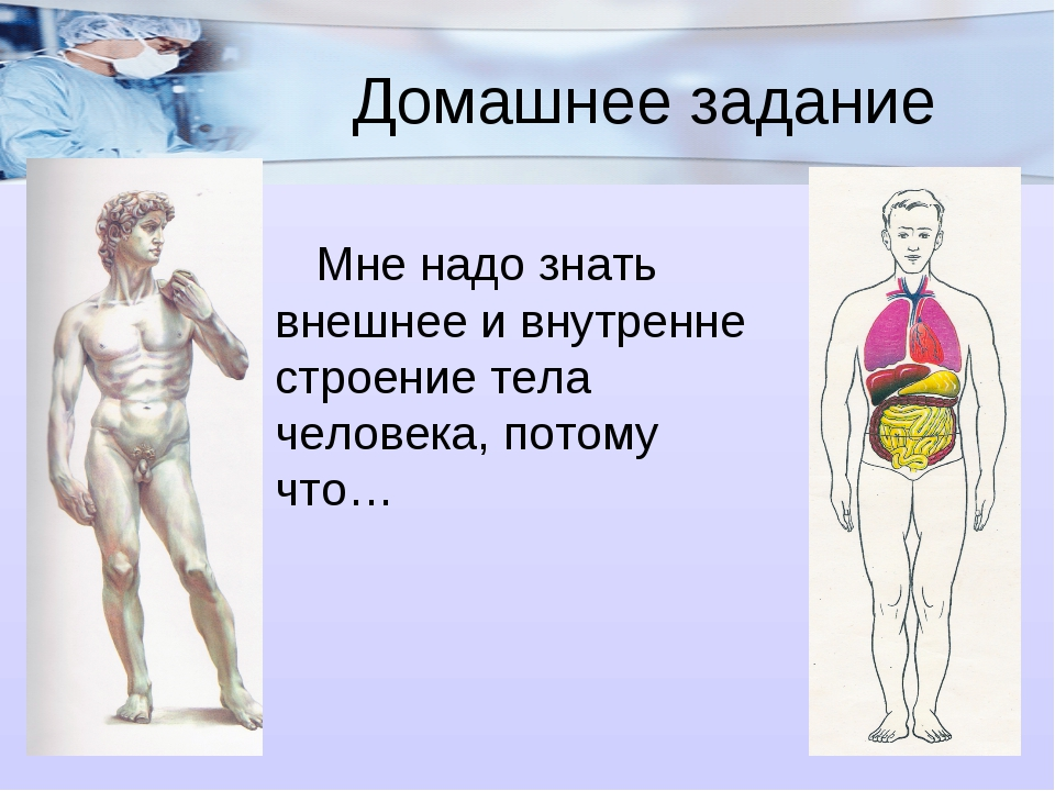 Домашнее задание Мне надо знать внешнее и внутренне строение тела человека,...