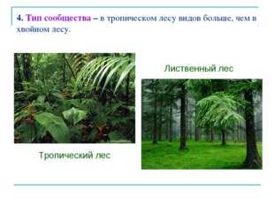 4. Тип сообщества – в тропическом лесу видов больше, чем в хвойном лесу. Троп