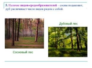 5. Наличие видов-средообразователей – сосны подавляют, дуб увеличивает число